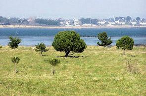 Une des vues du salon ,donnant sur l'Ile de Bo�dic ,dans le fond..